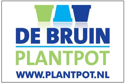 dealers pasquin bini nederland vasi plantpot